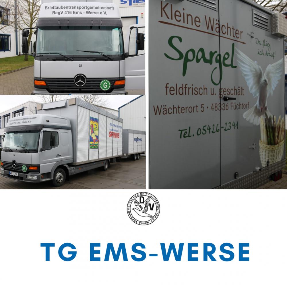 KabiTG-Ems-Werse